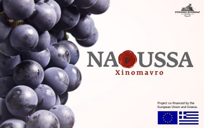 Naoussa Xinomavro Wine Fair & Dinner